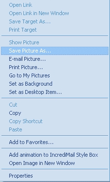 Internet Explorer's Right Click Menu (Picture used for an example)